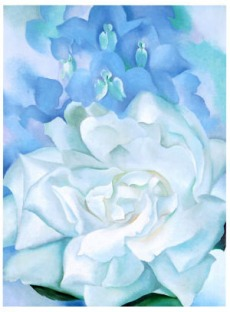 georgia-okeeffe-white-rose-w-lakspur-no-2