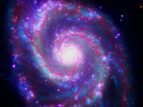 M51 spiral purple dots are black holes