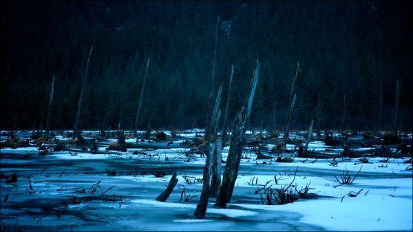 Near Trail of Blue Ice Portage Valley AK by JJ