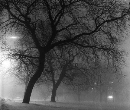 Chicago Fog at Night by Emily Barney FCC