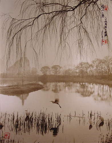 Don Hong-Oai, Untitled