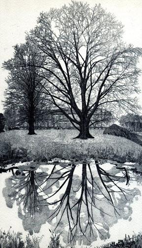 Federica Galli il giardino della Villa Reale a Monza 1996-7