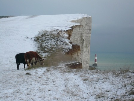 Winter Day at Beachy Head by Jackie Watson Telegraph Big Picture