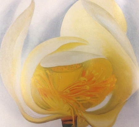 Georgia O'Keeffe White Lotus 1939 oil on canvas
