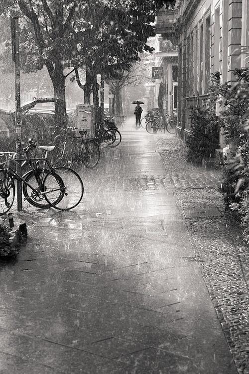 Rainy Day by Rafael Dos