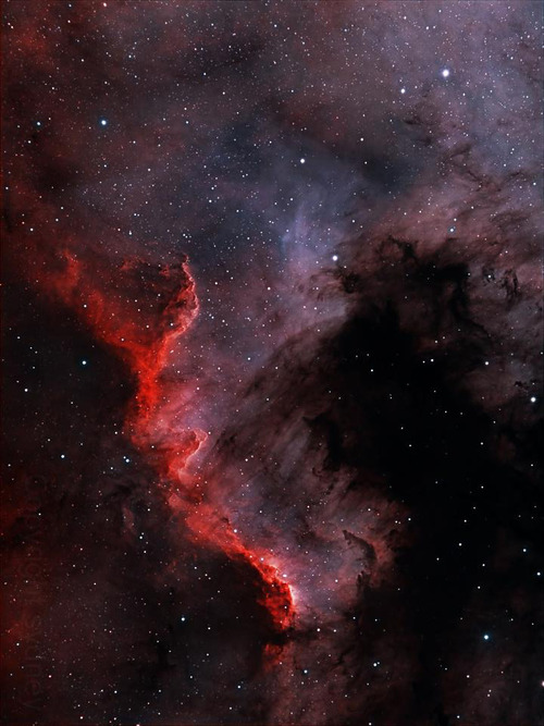 North America Nebula by Nick Pavelchak NASA APOD archives