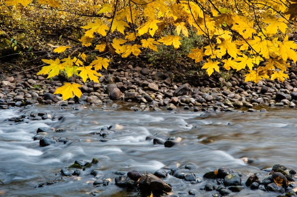 Fall on the Merced by puliarf FCC