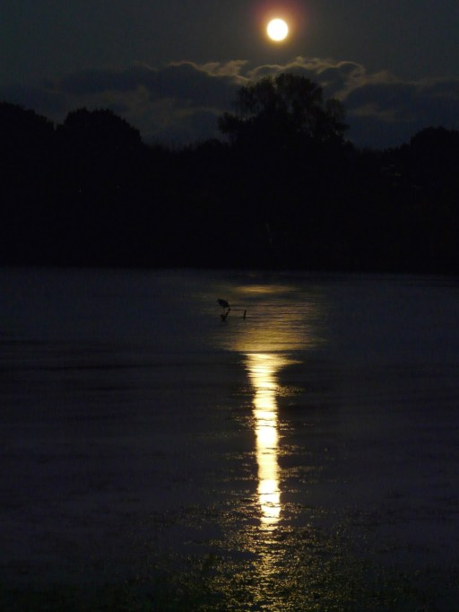 Lake Shawnee Hunters Moon by KrisH cc