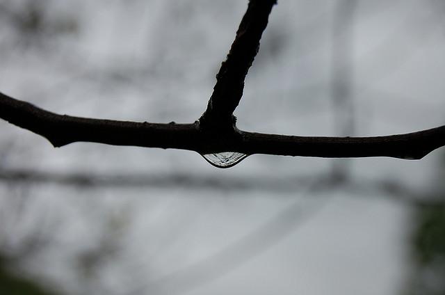 Rain Drop by kicksave 2930 FCC