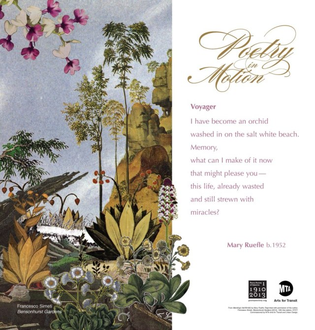 Mary Reufle Voyager Poetry in Motion