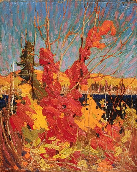Tom Thomson Autumn Foliage 1916 oil on wood