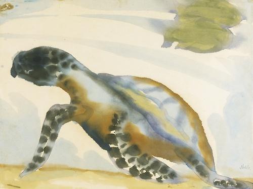 Emil Nolde Schildkrote turtle watercolor on paper nd
