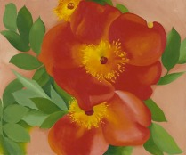 """Two Austrian Copper Roses III"" (1957, oil on canvas laid down on board) by Georgia O'Keeffe"