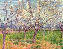 """""""Orchard with Blossoming Trees"""" (1888, oil on canvas) by Vincent van Gogh"""