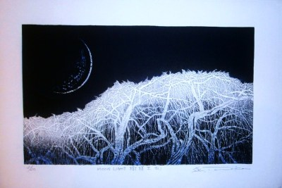 """Moonlight Shadow of Trees"""