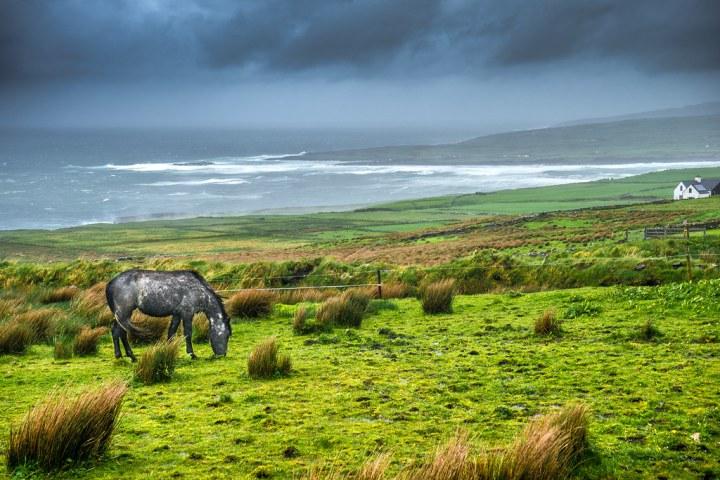 The dark horse, Liscannor, Ireland J0sh FCC