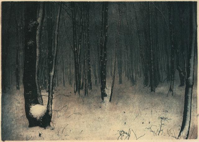 Rudolf Koppitz In Weiner Wald 1910