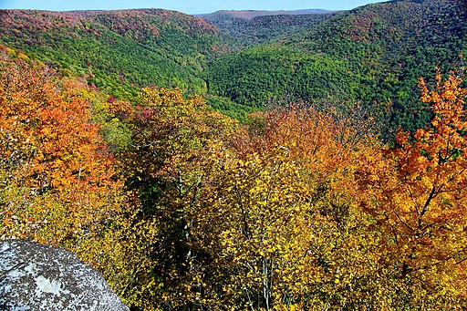 Fall-foliage-changing-mountains_-_Virginia_-_ForestWander